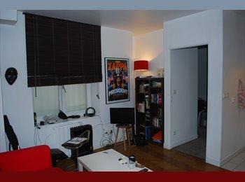 Cherche colocataire pour partager appartement