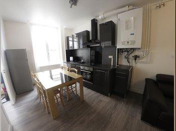 Chambre meublée 300€ - Centre St Etienne