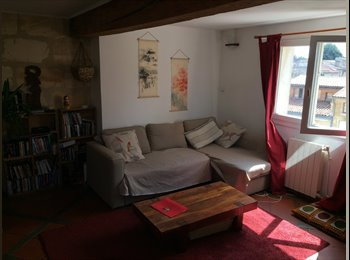 Colocation T3 duplex cosy saint michel