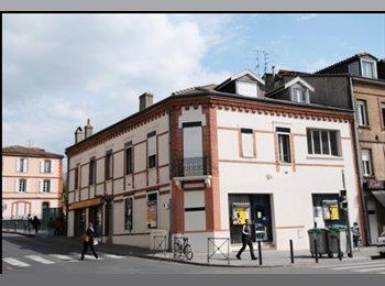 Appartager FR - Recherche un/une colocataire pour louer un super appart :), Toulouse - 367 € /Mois