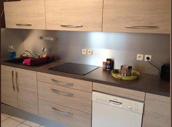 Appartager FR - colocation disponible dans meuble AMIENS , Amiens - 400 € /Mois