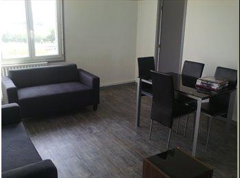 appartement neuf en colocation a rangueil