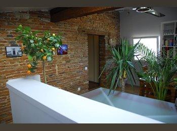 Appartager FR - Chambre à louer dans le centre ville , Toulouse - 550 € /Mois