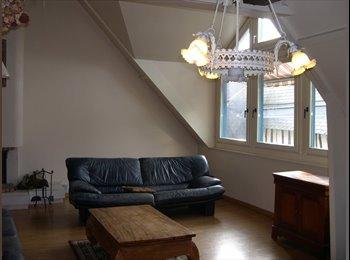 Appartager FR - Rouen centre chambre  chez l'habitant, Rouen - 315 € /Mois