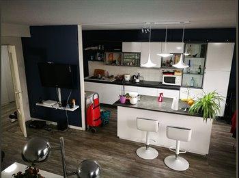 Appartager FR - Bachut, maison de la danse, très belle chambre, toute meublé, Lyon - 500 € /Mois