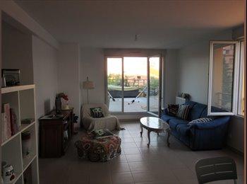 Appartager FR - Recherche locataire à partir de décembre pour 6 mois environ, Toulouse - 750 € /Mois