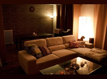 Appartager FR - Agréable Appartement proche Arènes, Toulouse - 400 € /Mois