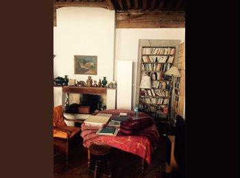 Appartager FR - Cherche colocataire appartement Lyon 1er, Lyon-1ER-Arrondissement - 500 € /Mois