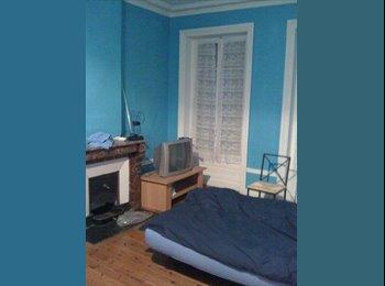 Chambre à loué dans appartement en colocation
