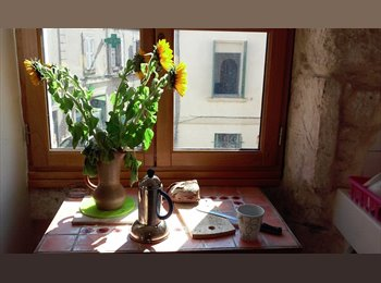 Appartager FR - Appartement charmant en plein centre et près des fac., Avignon - 800 € /Mois