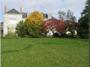 Appartager FR - Chambre libre dans grande propriété, Sainte-Gemmes-sur-Loire - 302 € /Mois