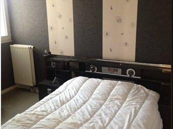 Appartager FR - Spacieux duplex au calme , Le Blanc-Mesnil - 500 € /Mois