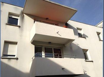 Appartager FR - très bel appartement chartrons, Bordeaux - 1500 € /Mois