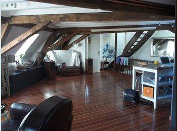 Appartager FR - Chambre meublée dans colocation Strasbourg-Centre, Strasbourg - 400 € /Mois