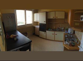 Colocation appartement 80m2 dans maison, Rennes sacrés...