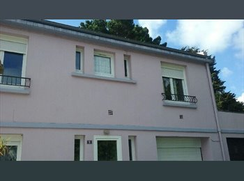 Appartager FR - Chambre meublée, Brest - 350 € /Mois
