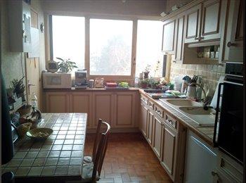 Chambre 12m2 dans appartement 80m2 à Cergy-Pontoise