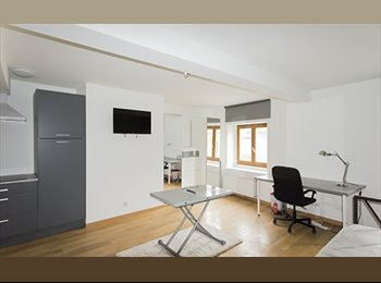 Appartager FR - Grand studio meublé - Nancy Hyper Centre, Nancy - 500 € /Mois
