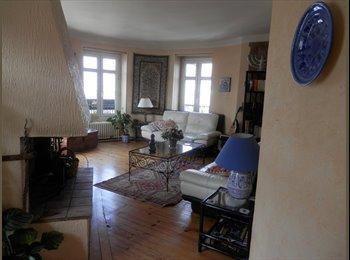 Appartager FR - Colloc de 4 a former dans grand appartement plein centre, Pau - 300 € /Mois