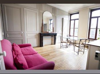 Chambre meublée  Appart rénové 370€/mois Metz Centre