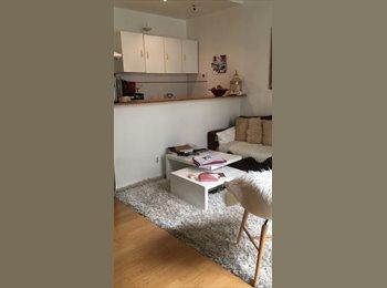 Appartement deux pièces de 40m2 à partager, meublé à deux...