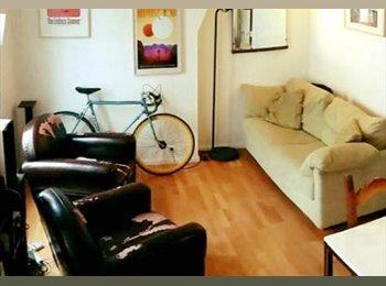 Duplex 80 m2 dans le 13ème