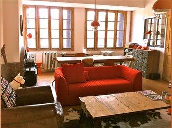 Co-location meublée au coeur de Perpignan