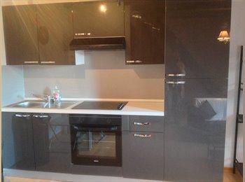 Appartager FR - T2 independant de 30 m2, Lille - 620 € /Mois