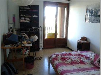 colocation fille centre ville Aix en Provence