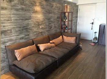 Newly-furnished stylish single room (female only)