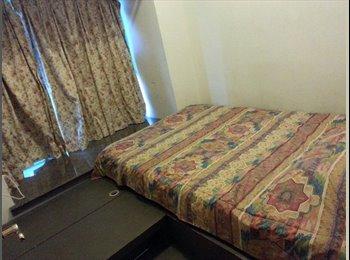 Tidy, clean quiet Room for rent
