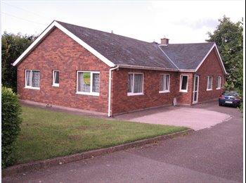 EasyRoommate IE - Foreign /erasmus house share in Bishopstown,Cork., Cork - €425 pcm