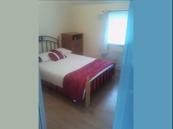 double room and single room to rent