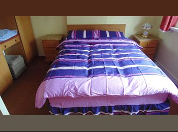 One large Double room available now