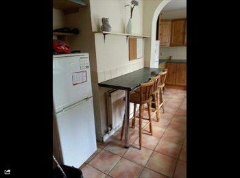 EasyRoommate IE - Looking for short term female roommate - Harolds Cross Dublin - South Dublin City, Dublin - €440 pcm