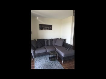 Large apartment to share