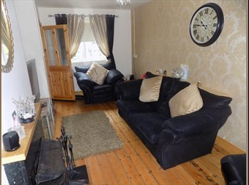 Quiet house in South Dublin. Ideal for a student