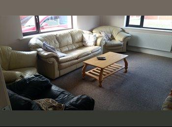 2 Large Double rooms in Knockmeenagh road Clondalkin