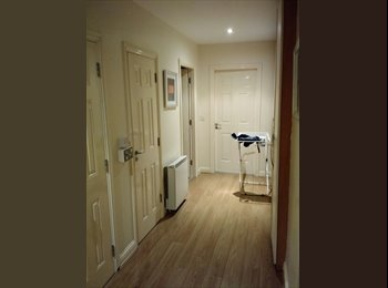 EasyRoommate IE - Amazing, comfortable and located apartment  - Dublin City Centre, Dublin - €330 pcm