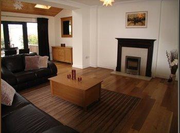 EasyRoommate IE - Double room en-suite plenty of storage room. - North Co. Dublin, Dublin - €500 pcm