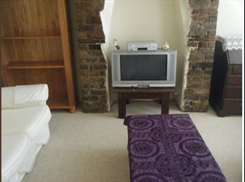 EasyRoommate IE - Two houses for rent. - Dublin City Centre, Dublin - €900 pcm