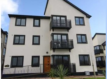EasyRoommate IE - Room available - Nice Apartment - Castlebar - Come have a look - Mayo, Mayo - €250 pcm
