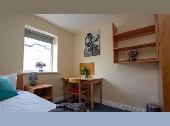 EasyRoommate IE - Schoolhouse Court, Near the Omni Shopping Centre - North Dublin City, Dublin - €500 pcm