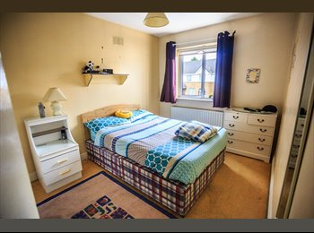 Large, bright, clean Single Room