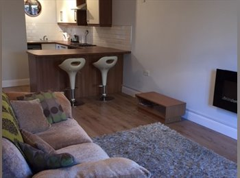 EasyRoommate IE - looking for a professional roommate - Galway, Galway - €600 pcm