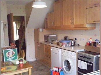 EasyRoommate IE - Spacious room in great house, Dublin - €500 pcm