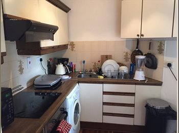 EasyRoommate IE - Furnished and spacey apartment in Ranelagh, Dublin - €725 pcm