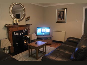 EasyRoommate IE - Move in around Early Feb - Super central & tastefully decorated apartment, Dublin - €1,200 pcm