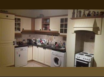 EasyRoommate IE - Single room in Killester, (right beside dart station), Dublin - €500 pcm