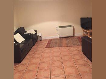 Flatmate wanted in 2 bedroom flat in Ballintemple, cork...